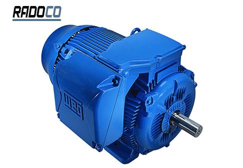 تنظیم دمای مناسب برای فعالیت بهینه الکتروموتور بسیار مهم است.